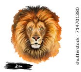 Lion Head Isolated On White...