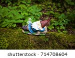 A Smiling Bearded Gnome In A...