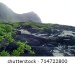 A Rugged Hawaiian Coastline In...