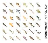 set vector illustration of... | Shutterstock .eps vector #714737569