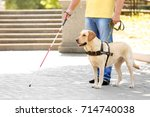 guide dog helping blind man in... | Shutterstock . vector #714740038