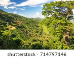 lush green landscape in the... | Shutterstock . vector #714797146