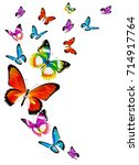 beautiful color butterflies set ... | Shutterstock .eps vector #714917764