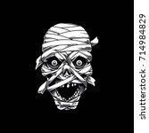 mummy head | Shutterstock .eps vector #714984829