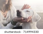 Stock photo woman gently caresses her dog 714994330