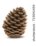 pine cone isolated on a white... | Shutterstock . vector #715041454