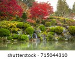 autumnal pond in nikko national ... | Shutterstock . vector #715044310