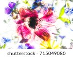 frozen flower in ice | Shutterstock . vector #715049080