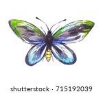 ornithoptera alexandrae... | Shutterstock . vector #715192039