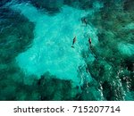 dolphins of isla mujeres  ... | Shutterstock . vector #715207714