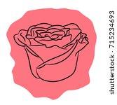 bud flower rose from the... | Shutterstock .eps vector #715234693