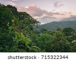 Tropical Mountain Forest At...