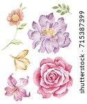 watercolor illustration bouquet ... | Shutterstock . vector #715387399