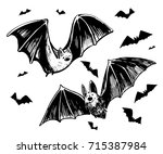 sketch of a bat. hand drawn... | Shutterstock .eps vector #715387984