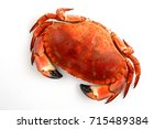 Small photo of Crab