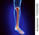 3d illustration of human body... | Shutterstock . vector #715531900