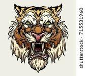 vector illustration head... | Shutterstock .eps vector #715531960