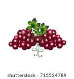 grapes cartoon | Shutterstock .eps vector #715534789