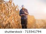young farmer examine corn seed... | Shutterstock . vector #715541794
