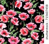 hand painted poppy flowers... | Shutterstock . vector #715607458