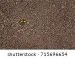 faroe island | Shutterstock . vector #715696654