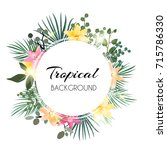 abstract natural tropical frame ... | Shutterstock .eps vector #715786330