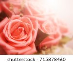 beautiful roses in soft color... | Shutterstock . vector #715878460