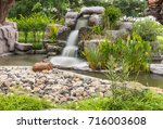 dreamy waterfall and rocks ... | Shutterstock . vector #716003608