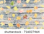 vintage nature background with... | Shutterstock . vector #716027464