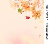 autumn vintage background with... | Shutterstock . vector #716027488