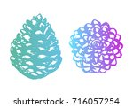 christmas hand drawn pine cones ... | Shutterstock .eps vector #716057254
