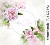 watercolor pink peonies frame... | Shutterstock . vector #716137693