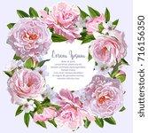 vector pink peonies wreath...   Shutterstock .eps vector #716156350