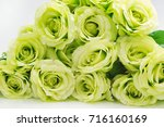 beautiful roses for background. ... | Shutterstock . vector #716160169