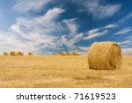 Round Bale Of Straw In The...