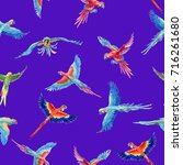 watercolor seamless pattern... | Shutterstock . vector #716261680