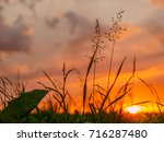 sunset with clouds and grasses | Shutterstock . vector #716287480