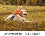 little boy sits astride dog on... | Shutterstock . vector #716343694