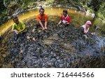 terengganu  malaysia  ... | Shutterstock . vector #716444566