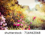 Autumn Garden Background With...