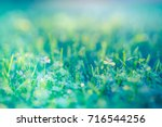 amazing nature closeup green... | Shutterstock . vector #716544256
