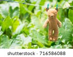 haning teddy bear on nylon line ... | Shutterstock . vector #716586088