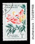 Small photo of MOSCOW, RUSSIA - SEPTEMBER 3, 2017: A stamp printed in Gabon shows African Tulip Tree (Spathodeum campanulata), Flora serie, circa 1961