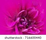 photo of dark pink purple...   Shutterstock . vector #716600440