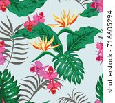 tropical seamless pattern with...   Shutterstock .eps vector #716605294