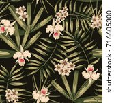 retro print tropical flower and ... | Shutterstock .eps vector #716605300