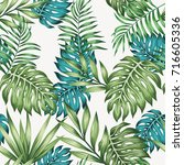 blue and green tropical leaves... | Shutterstock .eps vector #716605336