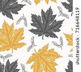 engraving autumn maple seamless ... | Shutterstock .eps vector #716648119