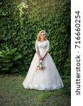 lovely young bride in wedding... | Shutterstock . vector #716660254