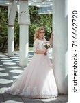 lovely young bride in wedding... | Shutterstock . vector #716662720
